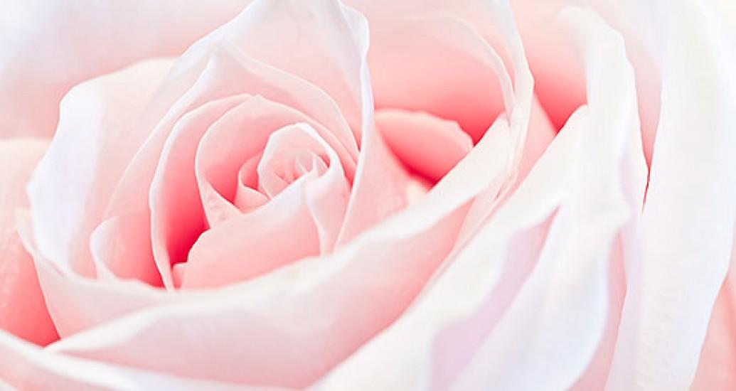 Decoração de casamento em rosa