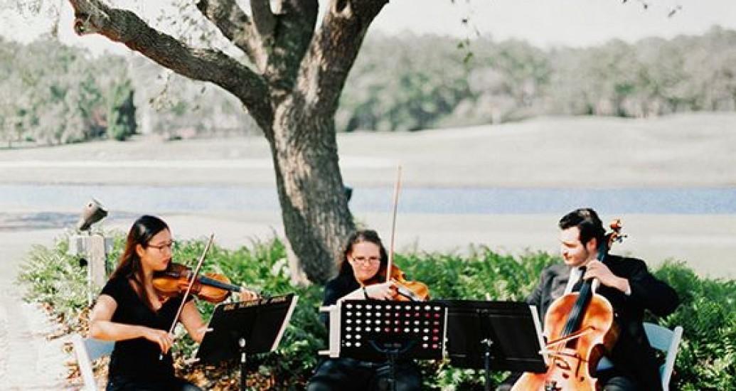 Corais e orquestras para casamento